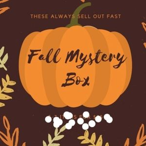 HUGE adorable fall mystery box🍃🍂🍁🍂